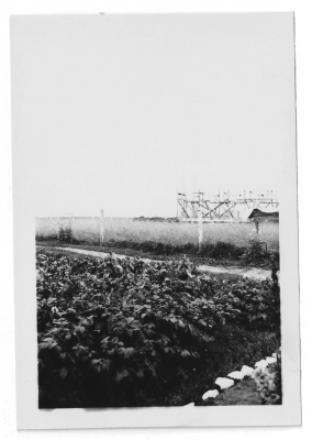 Farm fields at Moose Factory
